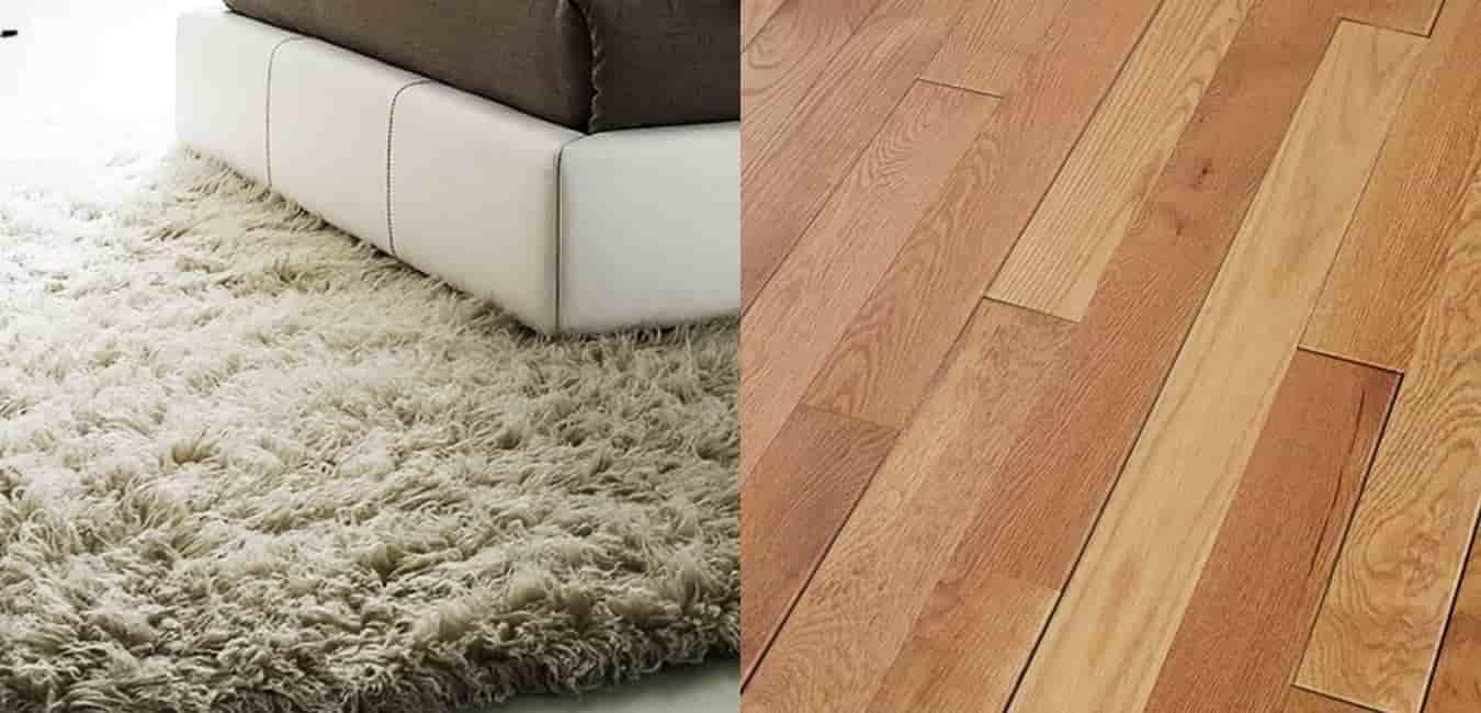 Carpet or Hardwood in Bedroom